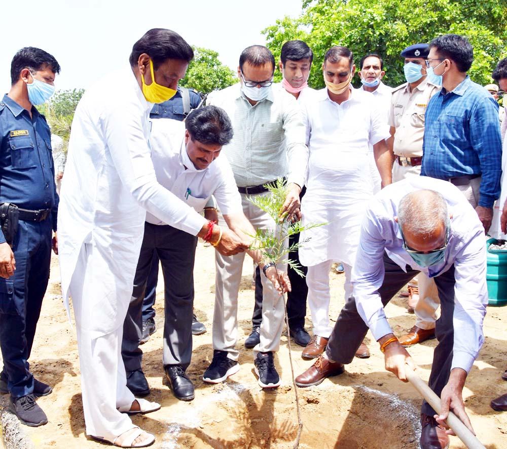 बिजली मंत्री ने पौधारोपण कर दिया पर्यावरण संरक्षण का संदेश