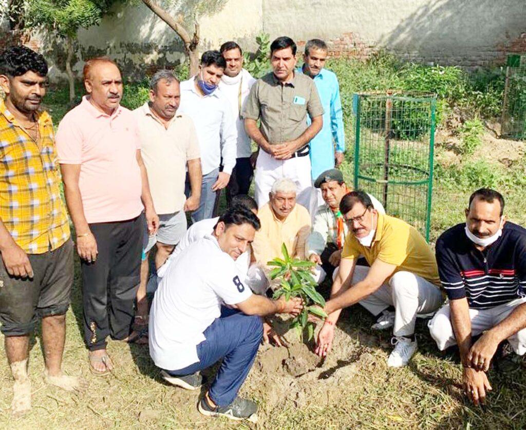 गोविंद औषिध बगीचे में रुद्राक्ष का पौधा लगाया