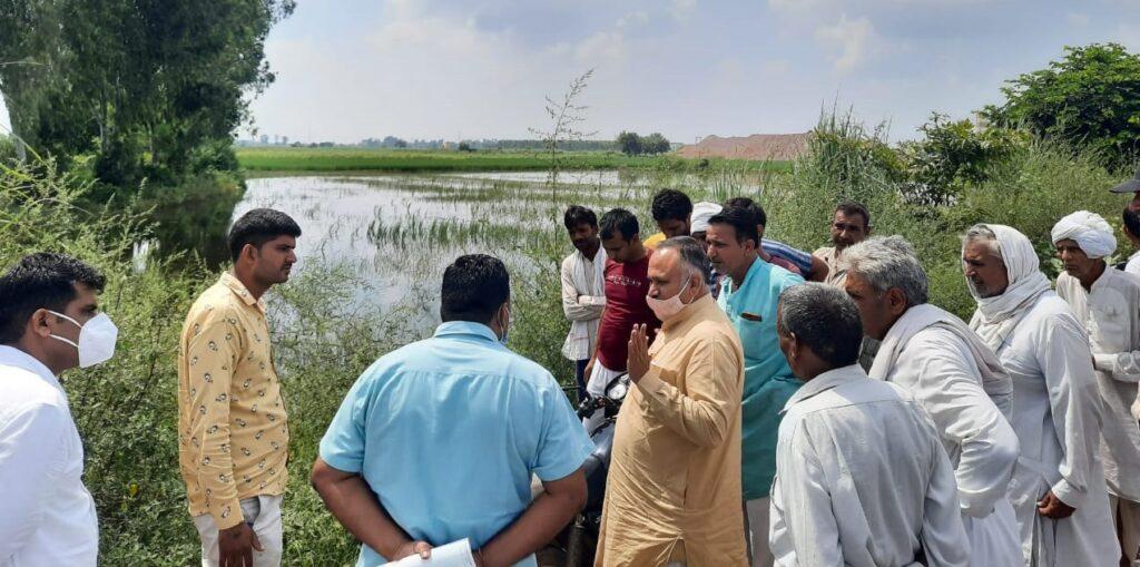 भाजपा नेता ने खेतों में जलभराव का लिया जायजा